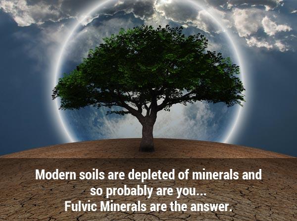 Modern Soils